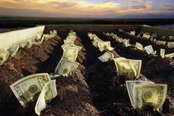 Льготы для пенсионеров на земельный налог