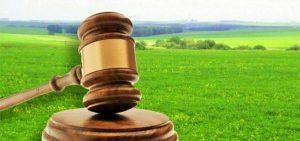 Как попасть на аукцион на право заключения договора аренды земельного участка